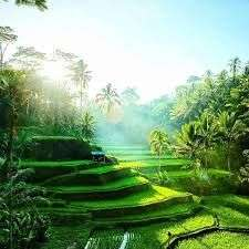 From London: Bali, Lombok & Gili Islands (Indonesia) Holiday £534.03pp @ Ebookers