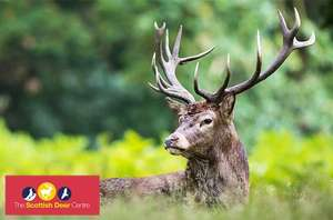 Family Ticket (2A + 2C) for The Scottish Deer Centre £12 via Itison - also Bears / Wolves / Otters + lots more