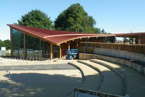 Brand new Free Sherwood Forest visitor centre (from 13 Aug)