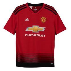 Kids (6-14 years) New Season Premier League (Man United & Man City) footy shirts £32 delivered @ Kitbag