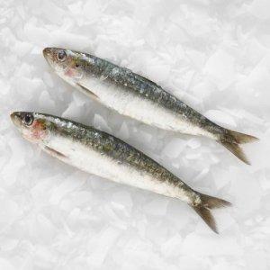 Morrisons fresh sardines £2 a kilo down from £3 a kilo.