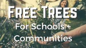 Free trees for schools and communities @ Woodland Trust