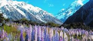 From London: 3 Week Trip to New Zealand Inc Flights, Accommodation and Car Hire Total £2102.58 for 2/£1051.29pp @ Ebookers