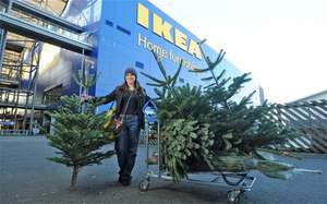 Ikea Spend £25 or more on Christmas tree receive £20 voucher, tree effectively £5! - Starts 22nd November!
