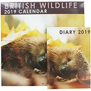 2019 calendar and diary sets from £2 at The Works + free click and collect