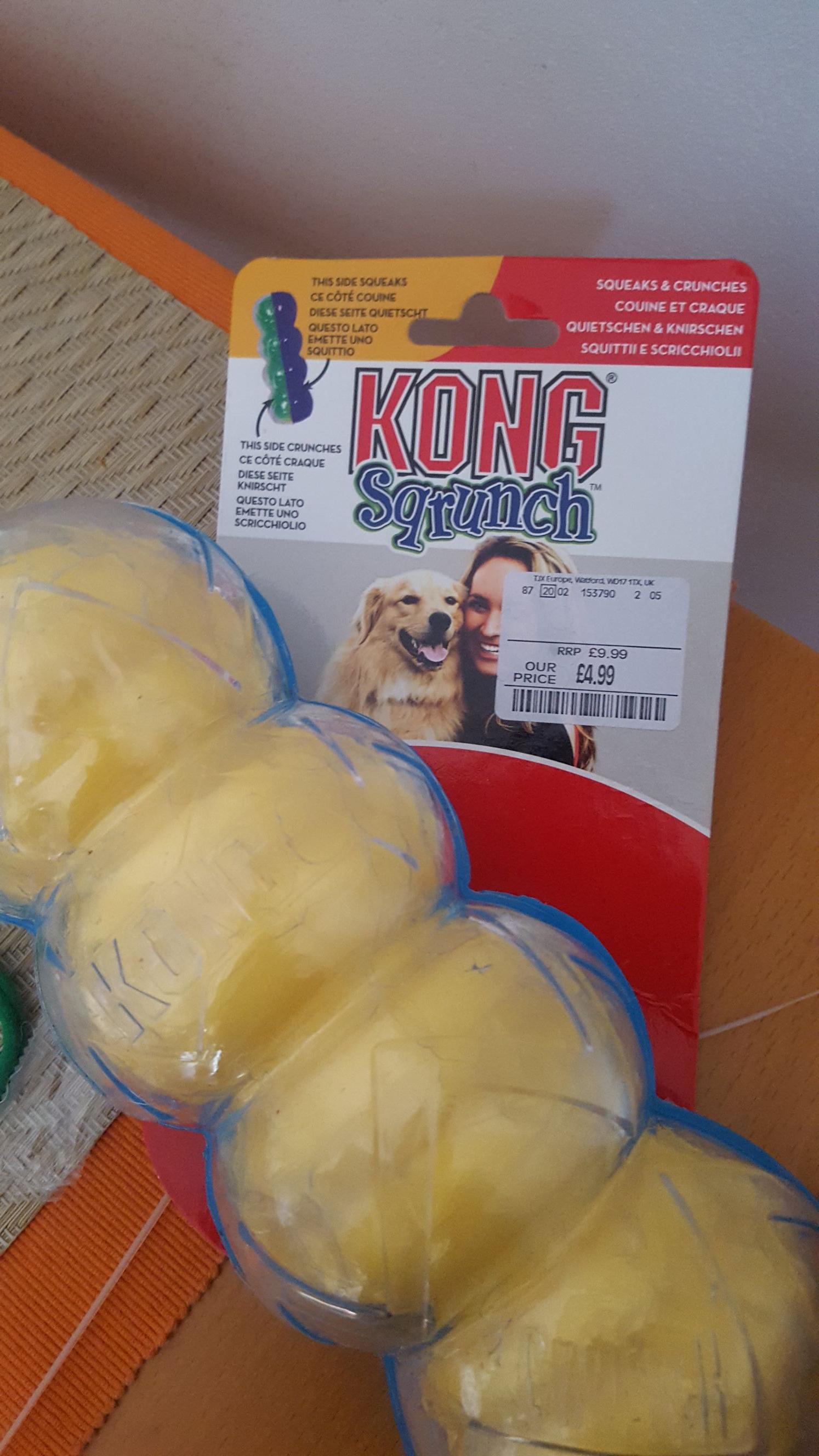 Large Kong Sqrunch dog toy £4.99 Homesense Manchester Arndale Centre