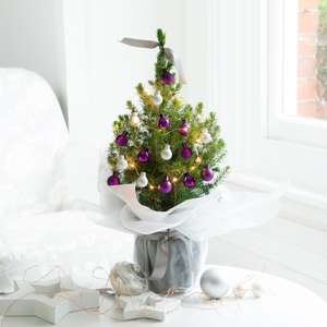20% off Decorated Mini Christmas Trees with code @ Appleyards London