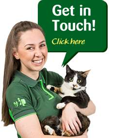 Free Pets at Home Activity Groups for Children