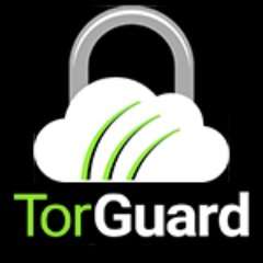 Black Friday Code Live: TWO Years VPN + 30GB Encrypted Email + VPN Router £47 @ TorGuard