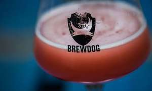 Brewdog 20% off all beer and merch online, 30% for punks!