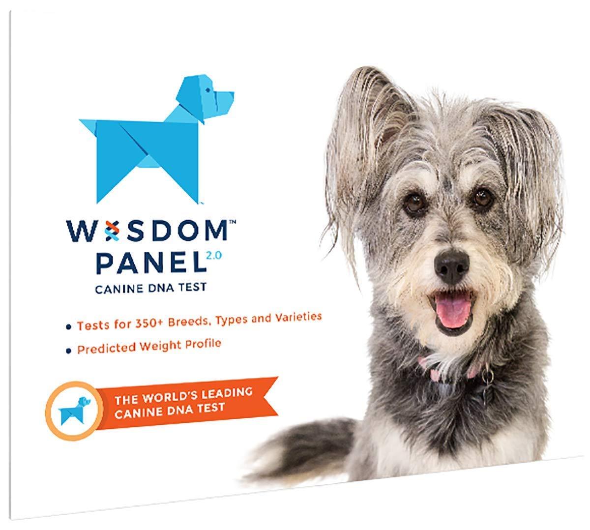 Wisdom Panel 2.0 Dog DNA test £41.25 @ Amazon