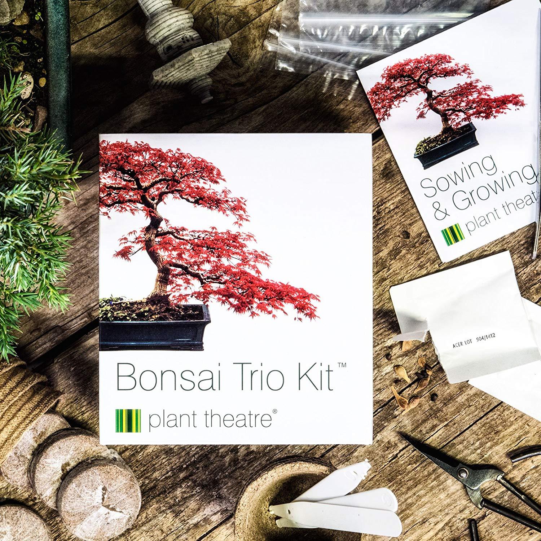 Plant Theatre Bonsai Trio Kit - 3 Distinctive Bonsai Trees to Grow £7.99 (Prime) / £12.48 (non Prime) at Amazon  - free del to 5th with code