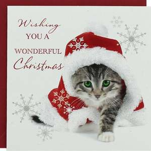 Kitten Luxury Christmas Cards - Pack of 8 - 37p C+C with Code The Works