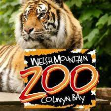 Half Price entry everyday including weekends until 6th January £6.34 adults, £4.77 kids or £19.95 family ticket @ Welsh Mountain Zoo