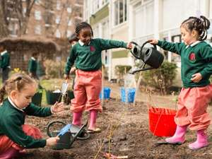 FREE Trees for schools and communities - From The Woodland Trust