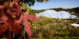 FREE ENTRY TO LOCALS (SPECIFIC COMMUNITY GROUPS) @ Eden Project (via Community Weekends)