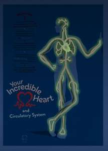 Free Glow in the Dark Poster from the British Heart Foundation