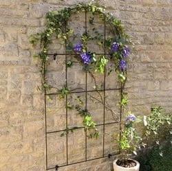 10% off Garden Trellis with code @ Harrod Horticultural