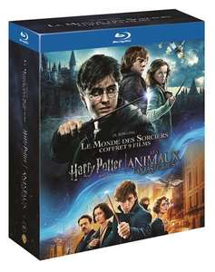 HARRY POTTER Complete 8-Film Collection + FANTASTIC BEASTS Blu-Rays £30 Delivered @ Amazon France
