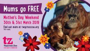 Mums go free on Mother's Day Weekend with one full price ticket, save extra 10% by booking online @ Twycross Zoo