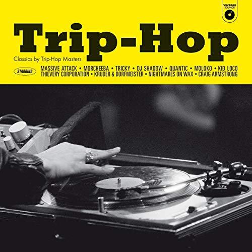 Trip-Hop - Classics by Trip-Hop Masters [180g VINYL] 2019 - £9.99 delivered @ Amazon.co.uk - Prime £9.99 / Non-Prime £12.98