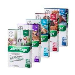 Advantage Spot On Flea Treatment - cats and dogs £9.48 @ Pets Drugs Online