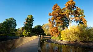 Adult Entrance Ticket to Kew Gardens £5 @ Red Letter Days (Using code)