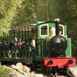 Family Ticket for Four to Conkers £18.36 w/code (normally £35.95) via Groupon - + Under 3's Go Free - Voucher valid until 31st July 2019