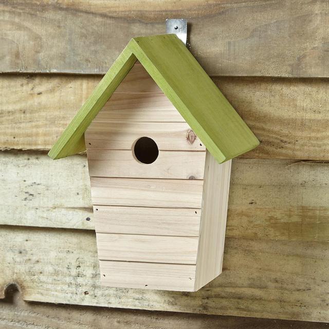 Morrison's Bird House £1.50 instore