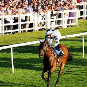 Summer Racing & Live Music for 2 w/drinks at Lingfield Park Racecourse £35 via TravelZoo