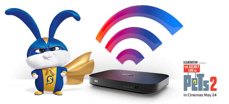 Sky Fibre Broadband Superfast (Avg 59Mb) £27pcm / 18m + £9.95 Set-up fee (potentially £22pcm including £105 cashback)