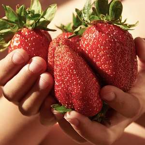 Free Strawberry Plug Plants with Orders over £25 with Code @ You Garden