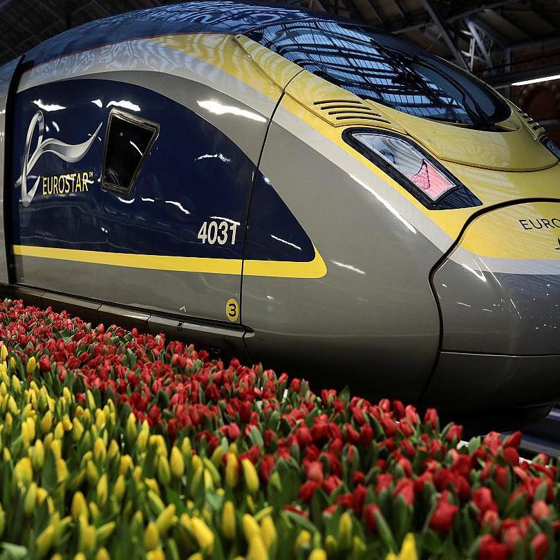 Eurostar return to Brussels, Lille or Paris £50 (July or August departures/ departing London St Pancras Intl) @ Eurostar Snap