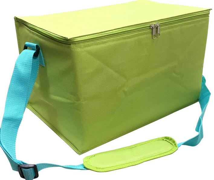 23L Family Cool Bag - £6 + Free C&C (plenty of stock availble) @ Homebase