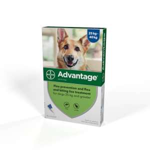 Advantage Flea Treatment and Drontal Wormers BOGOF @ Petshop (£1.99 delivery under £19.99)