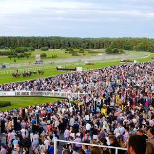 Ticket for Market Rasen races and Craig David concert £15 per adult instead of £38 @ Travelzoo