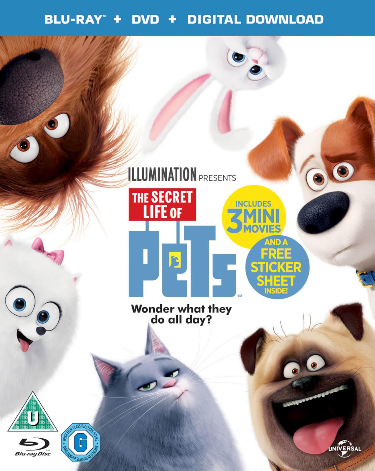 The Secret Life of Pets Blu-Ray + DVD + Digital Copy £3.49 @ Amazon Prime / £4.48 Non Prime