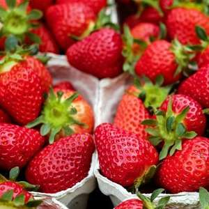 Strawberries 400g at Sainsbury's Local for £1