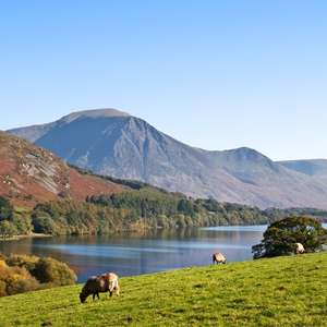 Overnight Cumbria stay Old Ginn House + Bottle of wine + breakfast for 2 people = £59 (two nights £109) @ Travelzoo