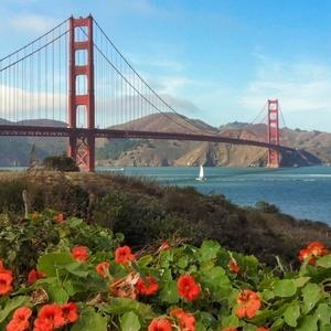 Direct British Airways return flight to San Francisco £267 (Departing LHR / Jan - Mar departures) @ Skyscanner / Travel Trolley