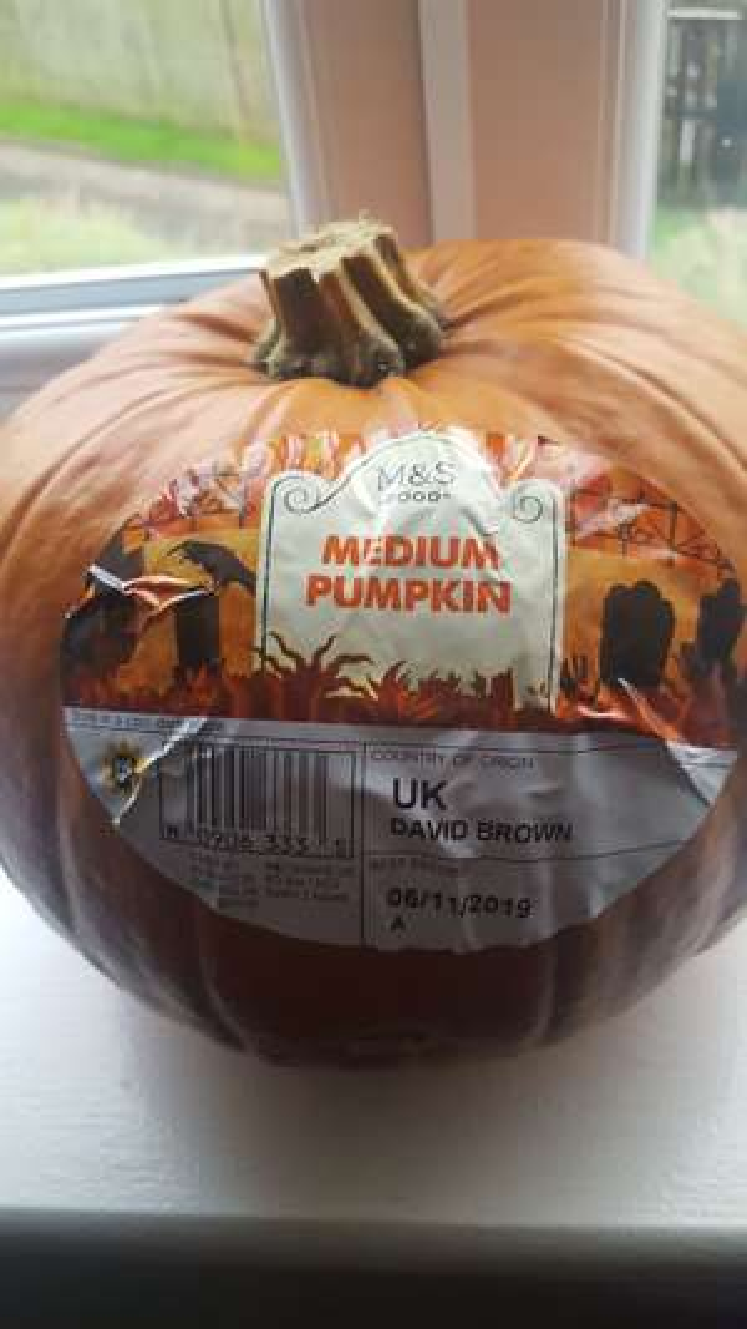 M&S Medium Pumpkin - 65p Instore (Birstall)