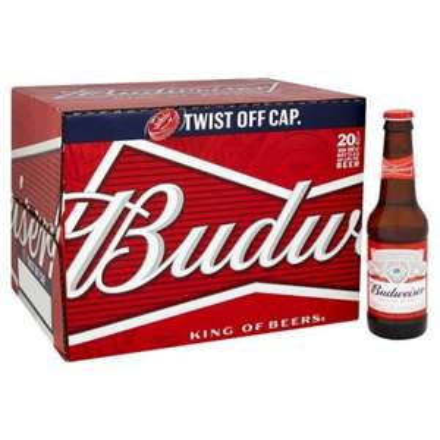 Budweiser 20x300ml bottles £6.88 instore at Sainsburys (Beeston)