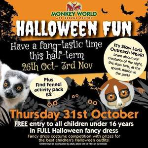 Free Entry on October 31st 2019 for Children in Full Halloween Fancy Dress at Monkey World
