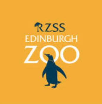 20% off Giant Lanterns with voucher  @ Edinburgh Zoo