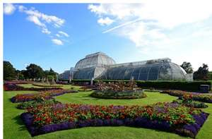 Visit to Kew Gardens and Palace for Two ( £33 for a family of 4 with code link in OP) - £21 with code @ Buyagift