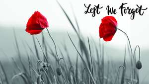 Free travel on London Northwestern & Chiltern Railways for members of the Armed Forces, Veterans and Cadets on Remembrance Sunday (10 Nov)