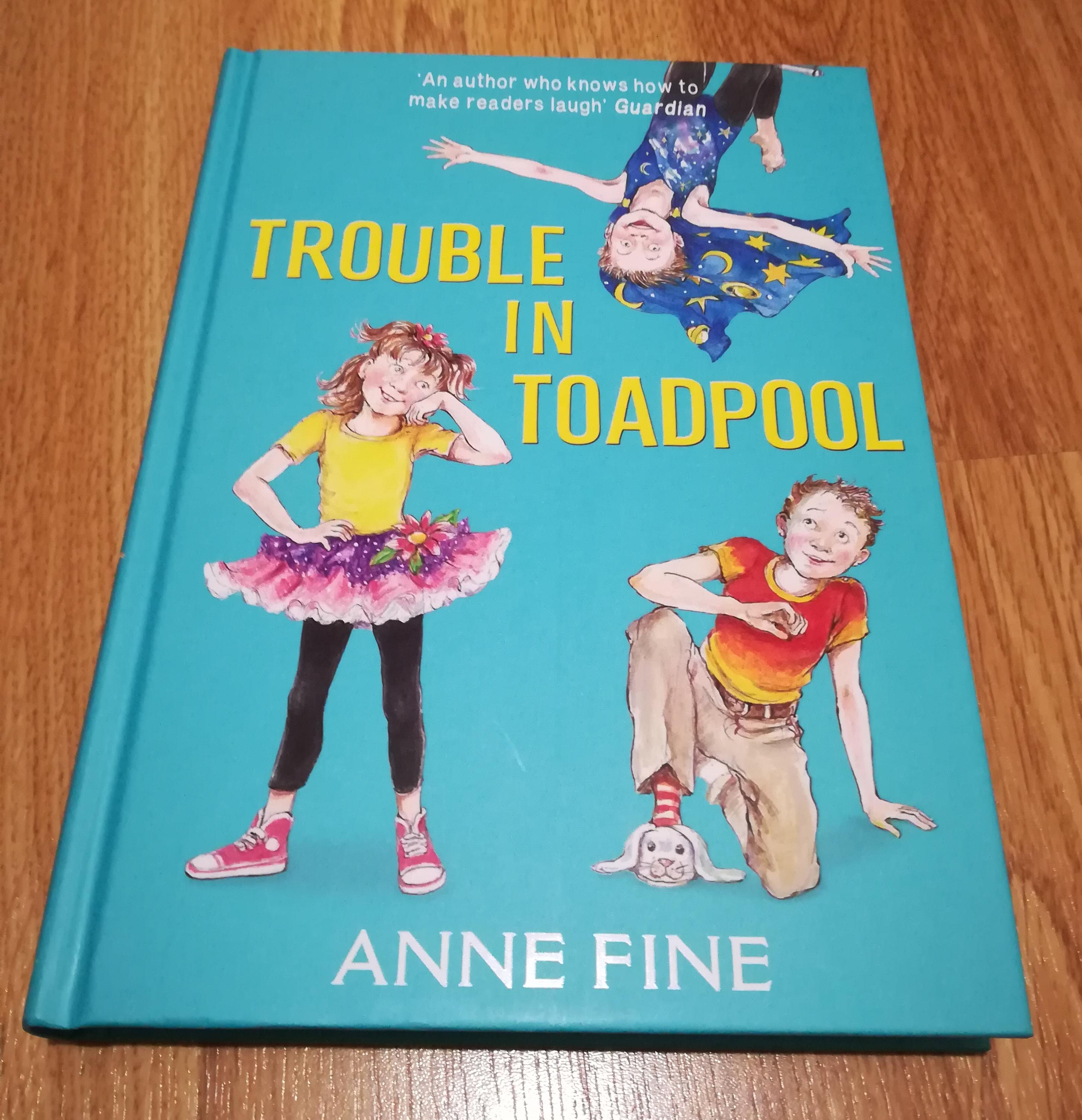 Trouble in Toadpool by Anne Fine Hardback £1 @ Poundland