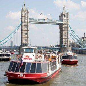 Family Thames Sightseeing Cruise with 24 Hour Rover Pass - £17 (£3.40pp based on 2 Adults & 3 Children) @ Red Letter Days