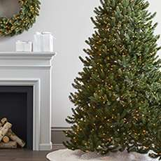 Up to 40% off quality Balsam Hill Christmas Trees