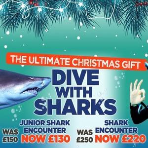 Junior Shark Dive Experience now £130 The Blue Planet Aquarium